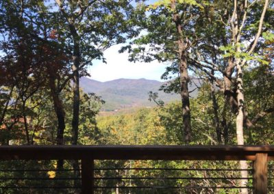 Dlx Eco View